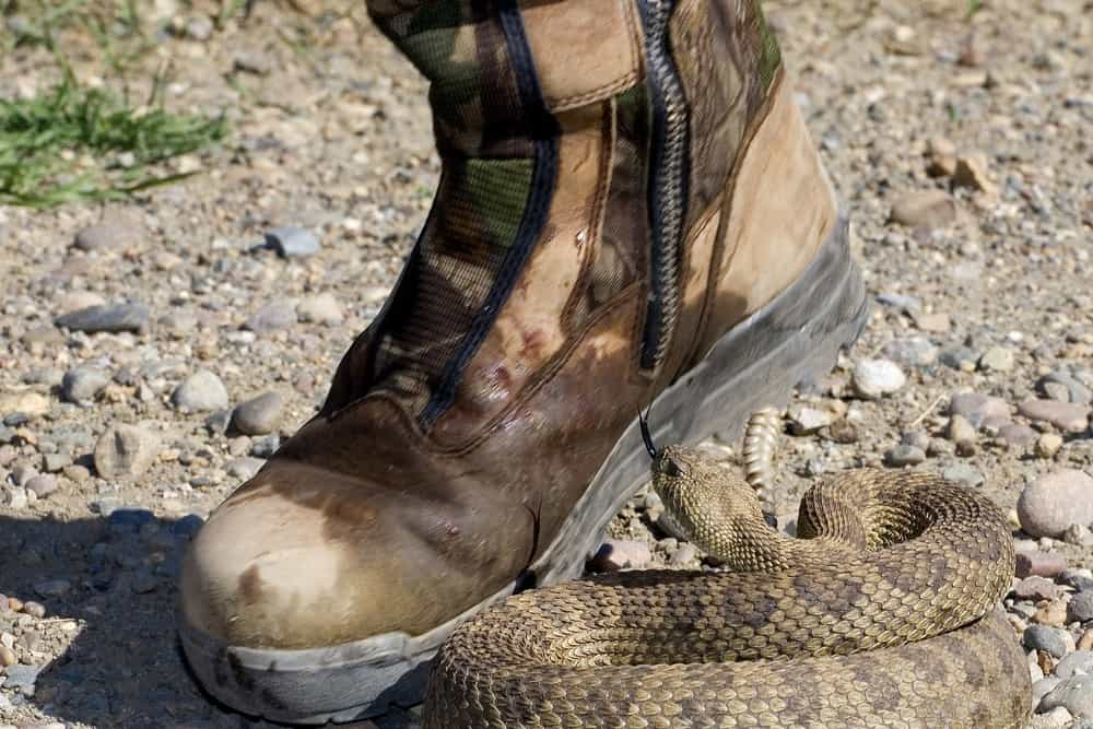 What Type of Rubber Boots should you wear to Prevent Snake Bites