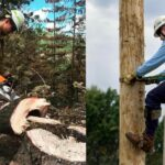 Lineman Boots Vs Logger Boots: What's the Difference?