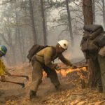 Do Logger Boots Work In Fire?