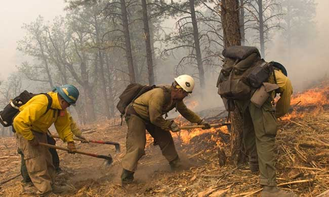 Do Logger Boots Work In Fire
