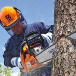 Best Hearing Protection for Chainsaw Use